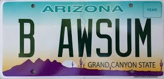 b-awsum-license-plate