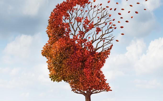 brain losing leaves, dementia, alzheimer's